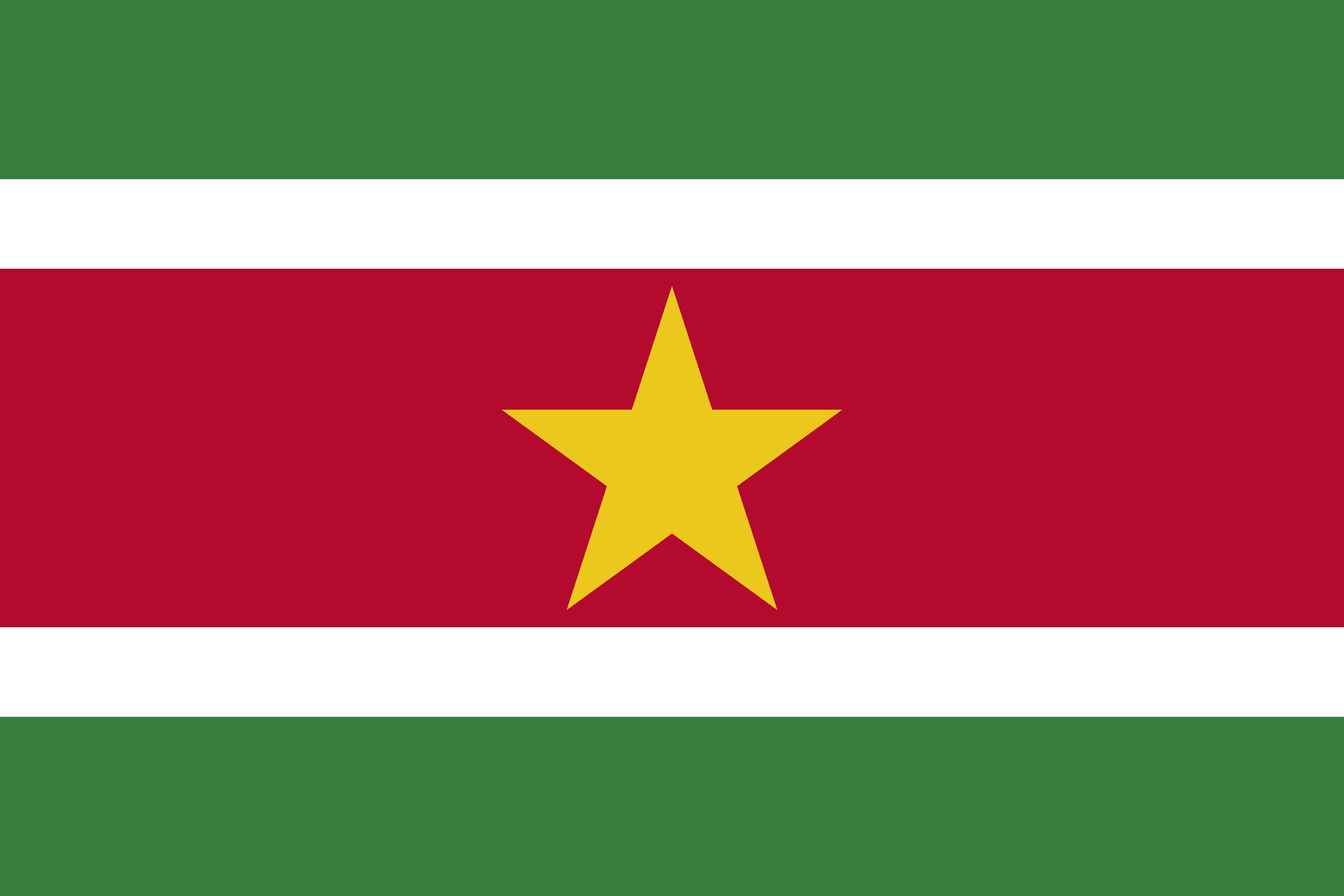 Image result for suriname flag