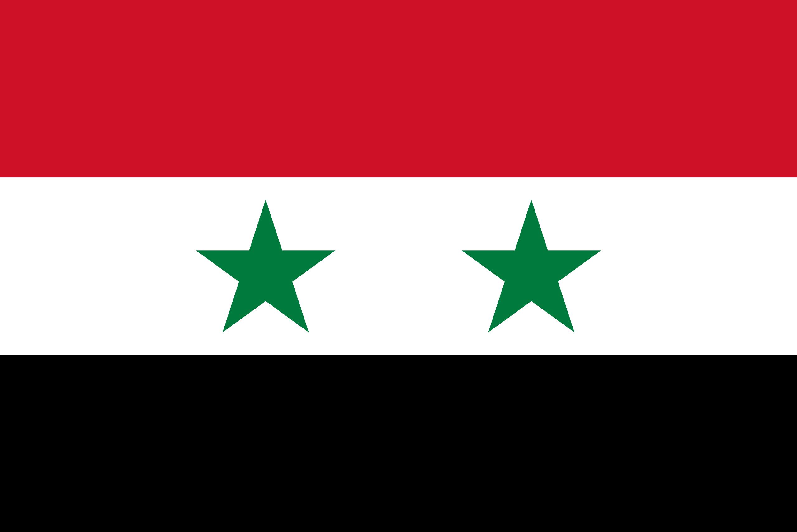 Image result for syrian flag