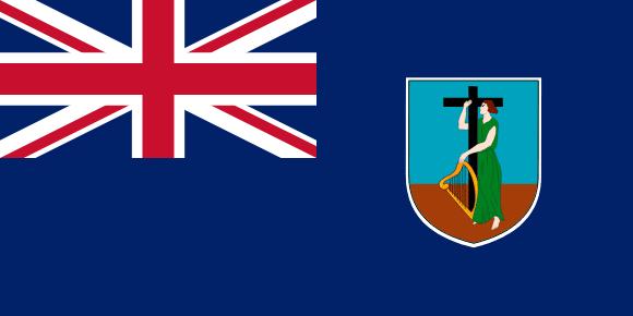 MS flag