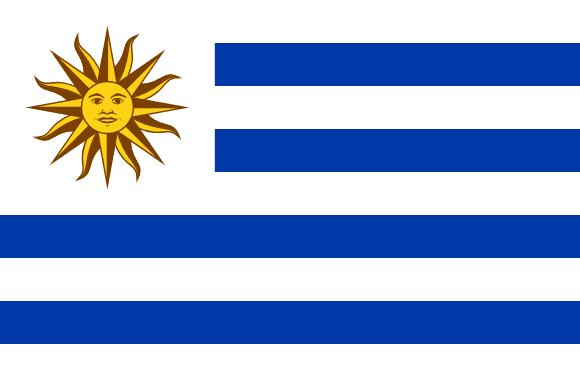 UY flag